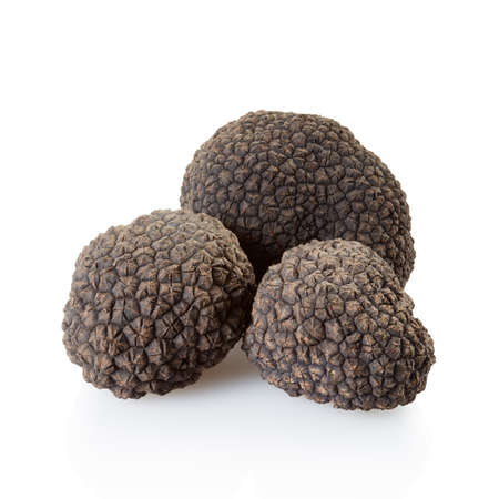 Black truffles group isolated on white