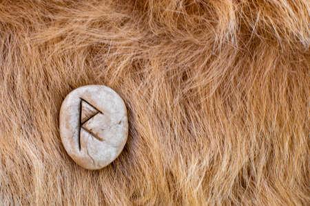Raido or Raidho Nordic stone rune on fur. Letter Raed of the Viking alphabet.
