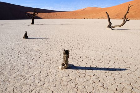solitair: View at the Sossusvlei  Stock Photo