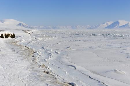 winterly: View on with pack ice frozen Van Mijenfjorden, Spitsbergen