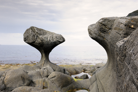 Rock formed by wind and water at Norwegian coast at low tide  photo