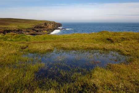Mull: Mull head, Orkney islands, UK