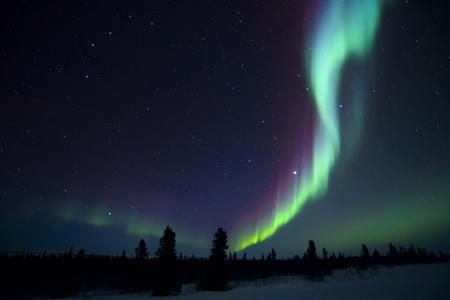Nightsky는 오로라 보 리 얼리스, 오로라, wapusk 국립 공원, 매니토바, 캐나다와 함께 밝았습니다.
