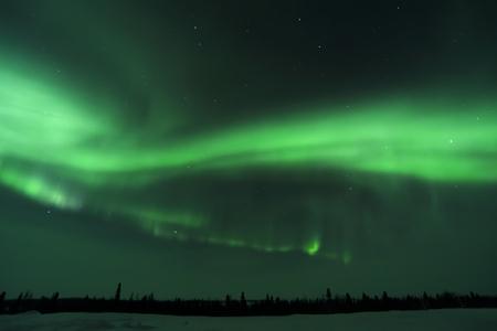 northpole: Nightsky lit up with aurora borealis, northern lights, wapusk national park, Manitoba, Canada.