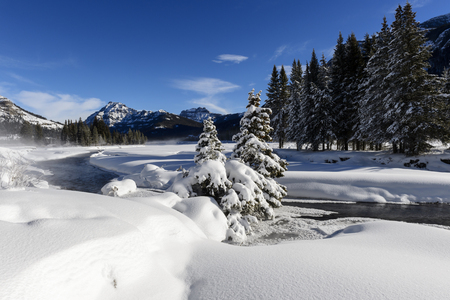 Winter landscape with Lamar river during winter, Lamar valley, Yellowstone national park, Montana, Wyoming, USA.