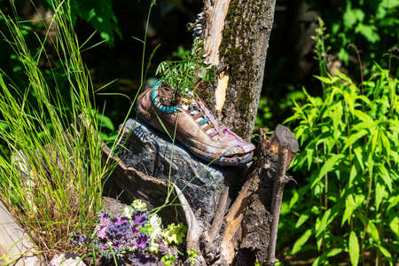 Old shoe as a decoration in the design of the garden.