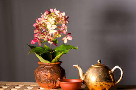 Rustic still life. Flower in a clay pot, Pialat and wiped the old kettle with reflection. Space for lettering and design