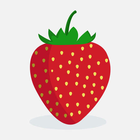 Vector illustration of fresh strawberry, Organic nutrition healthy food on white background