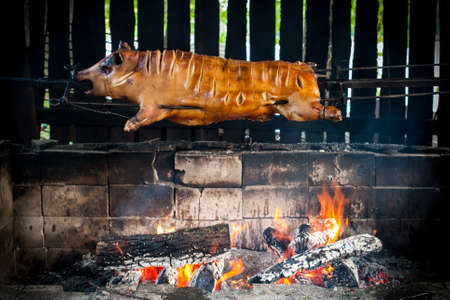 Horizontal colour image of hog bbq photo