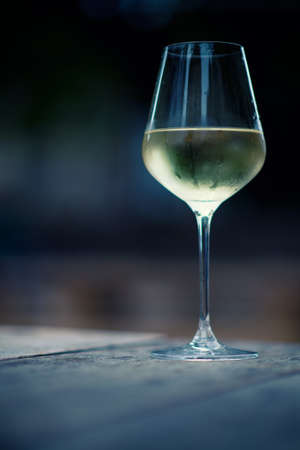 color image of chilled white wine in a glass , with copy space 版權商用圖片