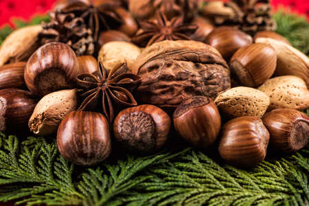 festive pine cones: Close up of mixed nuts with spices and pine cones