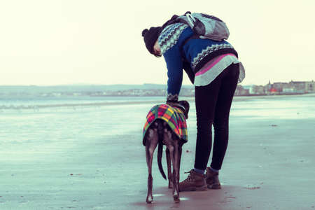 Unrecognisable hipster girl walking her dog, Greyhound, on the beach. Colorised filter effect image. photo