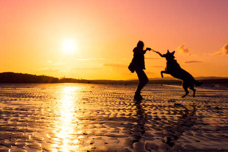 Hipster girl playing with dog at a beach during sunset, silhouettes with vibrant colors