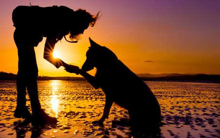 Hipster meisje spelen met hond bij een strand tijdens zonsondergang, silhouetten met levendige kleuren