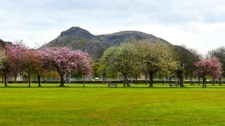 Spring in Meadows park, Edinburgh, with Arthurs seat view