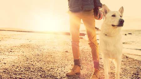 female dog: Chica inconformista juega con el perro en una playa durante la puesta de sol, el efecto de reflejo en la lente fuerte Foto de archivo
