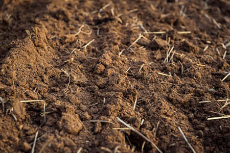 the ploughed field: Ploughed field, soil close up, agricultural background