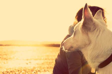 Hipster Mädchen, das mit Hund an einem Strand bei Sonnenuntergang, starke Lens Flare-Effekt Standard-Bild - 40753059