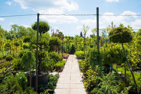 resale: Garden centre, plant nursery