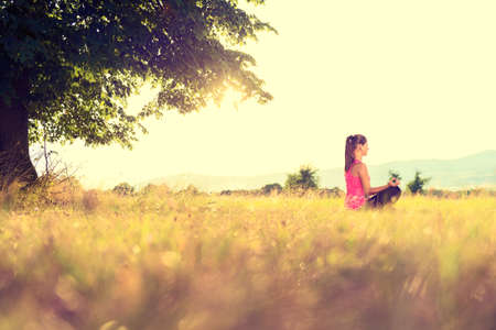 Young athletic woman practicing yoga on a meadow at sunset, image with lens flare 스톡 콘텐츠