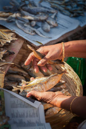 fish selling: Goan woman selling dried fish at Mapusa market, hand detail