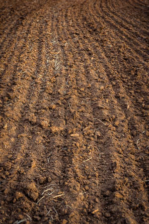 ploughed: Ploughed field, soil close up, agricultural background