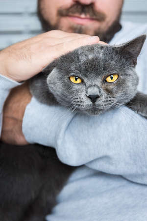 Man sitting in an armchair, holding his gorgeous pet cat Stock Photo