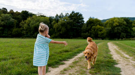 Adorable preschool girl playing with her cute pet dog golden retriever on a meadow