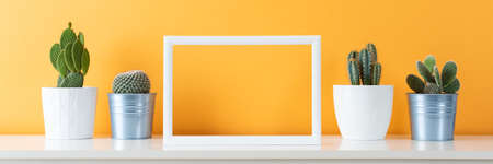 Collection of various cactus plants in different pots. Potted cactus house plants on white shelf against pastel mustard colored wall and picture frame mock up banner. Standard-Bild