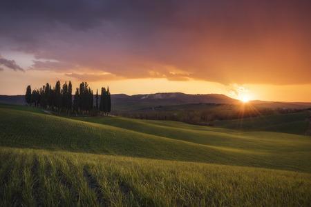 val dorcia: San Quirico dOrcia countryside, Val dOrcia, Tuscany, Italy