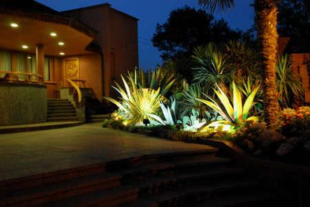 night garden Stock Photo