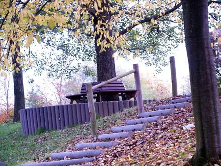 Parkbank im Herbst Stock Photo - 65416923