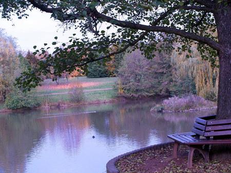 herbst: Park im Herbst