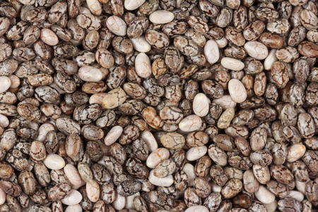 Closeup of lots of chia seeds viewed from the top