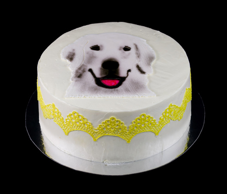 One white cake decorated with a dog face isolated on black