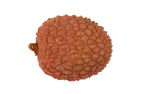 lichee: Side view of one lychee fruit Litchi chinensis, also known as litchi, liechee or lichee, isolated on a white background
