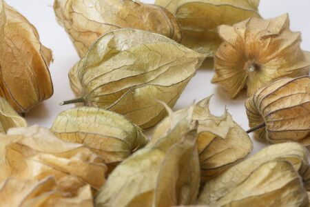 Several ripe Physalis fruits enclosed in their calyx against a white background Standard-Bild