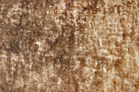 White marble surface covered with bronze dried mud coating Stock Photo - 4602024