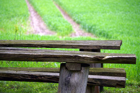 Benches at a field in spring. Reklamní fotografie