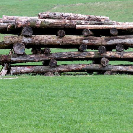 Wood pile on green meadow. Reklamní fotografie