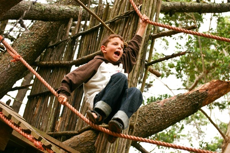 Young boy calling while climbing high tree and ropes Stock Photo - 9427086