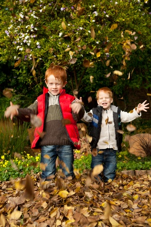 Two smiling brothers / sons are playing in the autumn / fall leaves, throwing them into the air and laughing in a park or garden setting photo