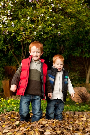Two happy and smiling brothers or sons are standing together in a pile of autumn / fall leaves in a park or garden photo