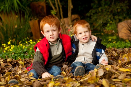 Two happy and smiling brothers or sons are sitting and hugging in a pile of colorful yellow and brown autumn / fall leaves in a garden or park setting photo