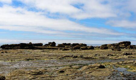 Rocky coast in the Pacific Rim National Park I, Vancouver Island, North America, Canada, British Colombia