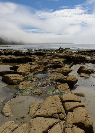 Rocky coast in the Pacific Rim National Park, Vancouver Island, North America, Canada, British Colombia