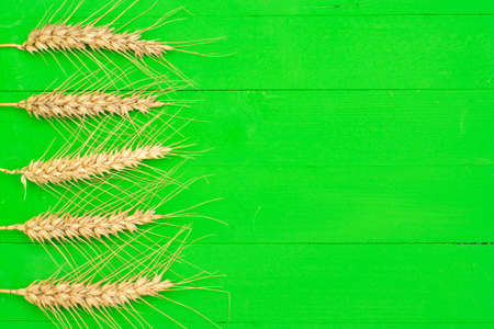 Green wooden background with five ears of wheat