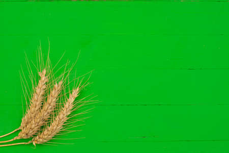 Green wooden background with three wheat ears Stock Photo - 150306298