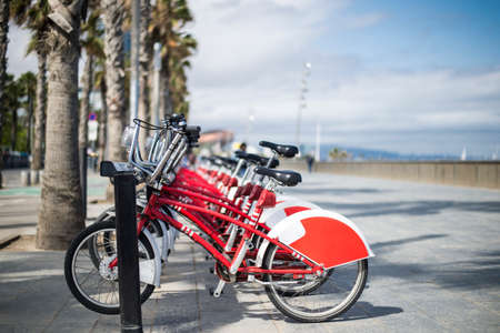 Shared bicycles are parked in the parking in Barcelona