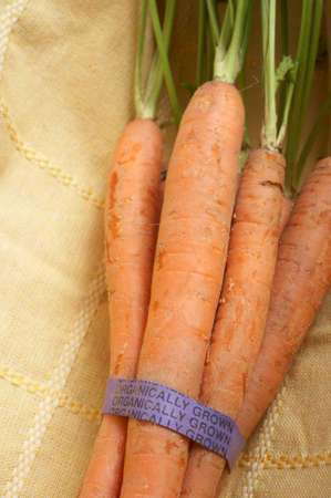 organically: Bunch of carrots with organically grown label Stock Photo